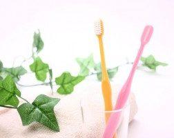 むし歯予防できる食べ物 ~東久留米 ひばりの森歯科